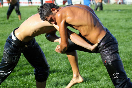 Turkish Oil Wrestling 09